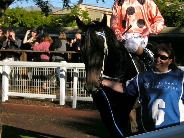Black Caviar – racing's antithesis
