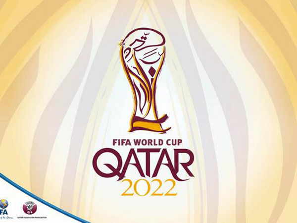 Luke Sale says FIFA's decision to award the 2022 World Cup to..
