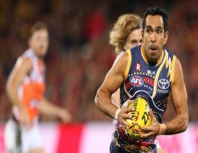 Stamping out Racism in the AFL