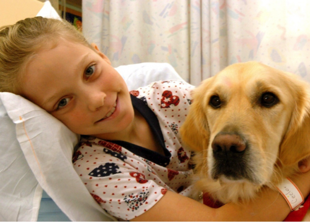 The power of pet therapy