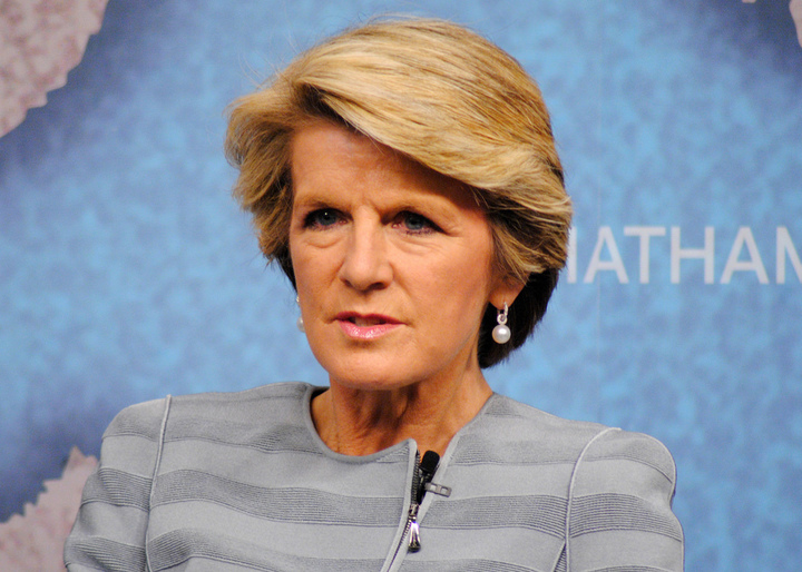Foreign Minister Julie Bishop has blamed the Labor party for anti-gay  marriage debate.