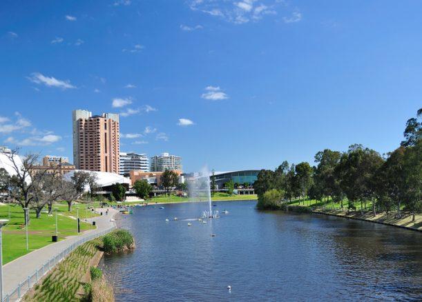 Adelaide's 'brain drain'