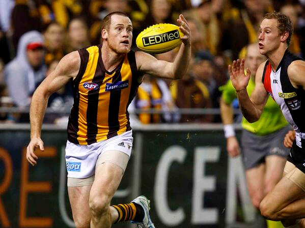 2013 AFL finals preview: Hawthorn