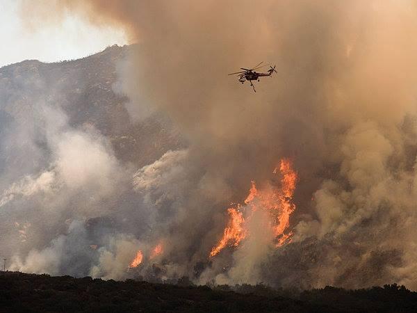 Understanding arson
