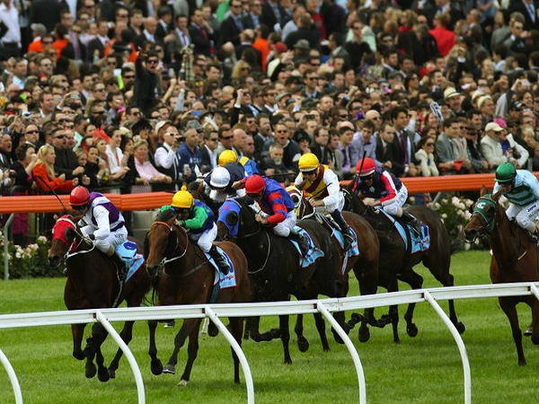 Cox Plate & Manikato Stakes preview