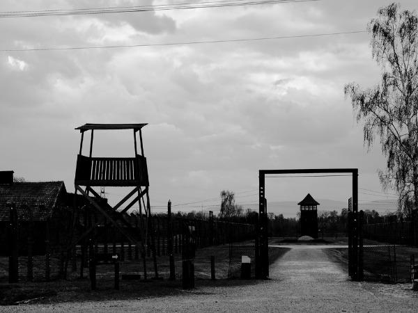 Auschwitz Nazi deserves forgiveness, not revenge