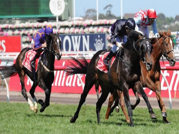 Spring Racing Preview