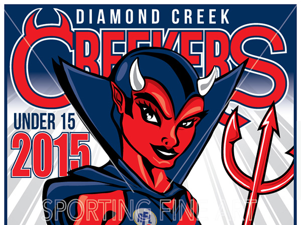 Diamond Creek Women's Football Club need online video coordinator