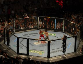 Mixed martial arts: towards legitimacy