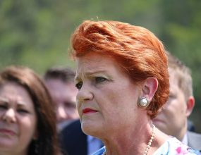 One Nation's support drops in the latest Newspoll