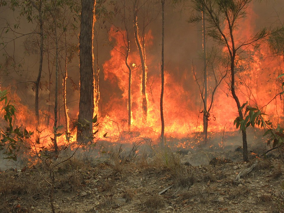 Queensland fires still burning and moving quickly north