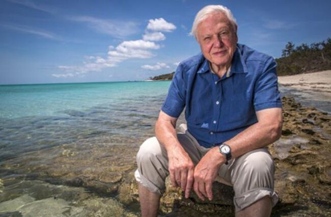 Attenborough criticises Australian climate inaction
