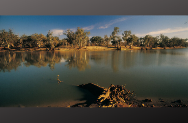 Protecting the Murray-Darling Basin
