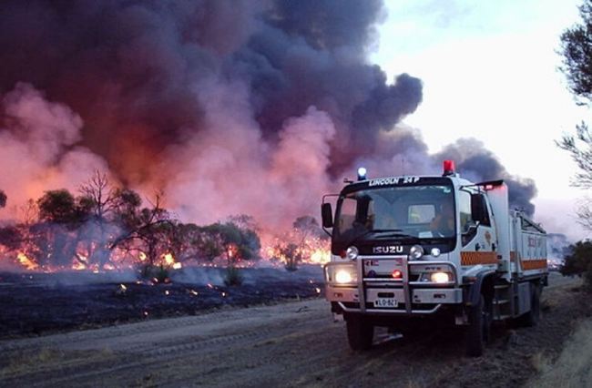 Bushfire-ravaged towns will receive $650m for recovery