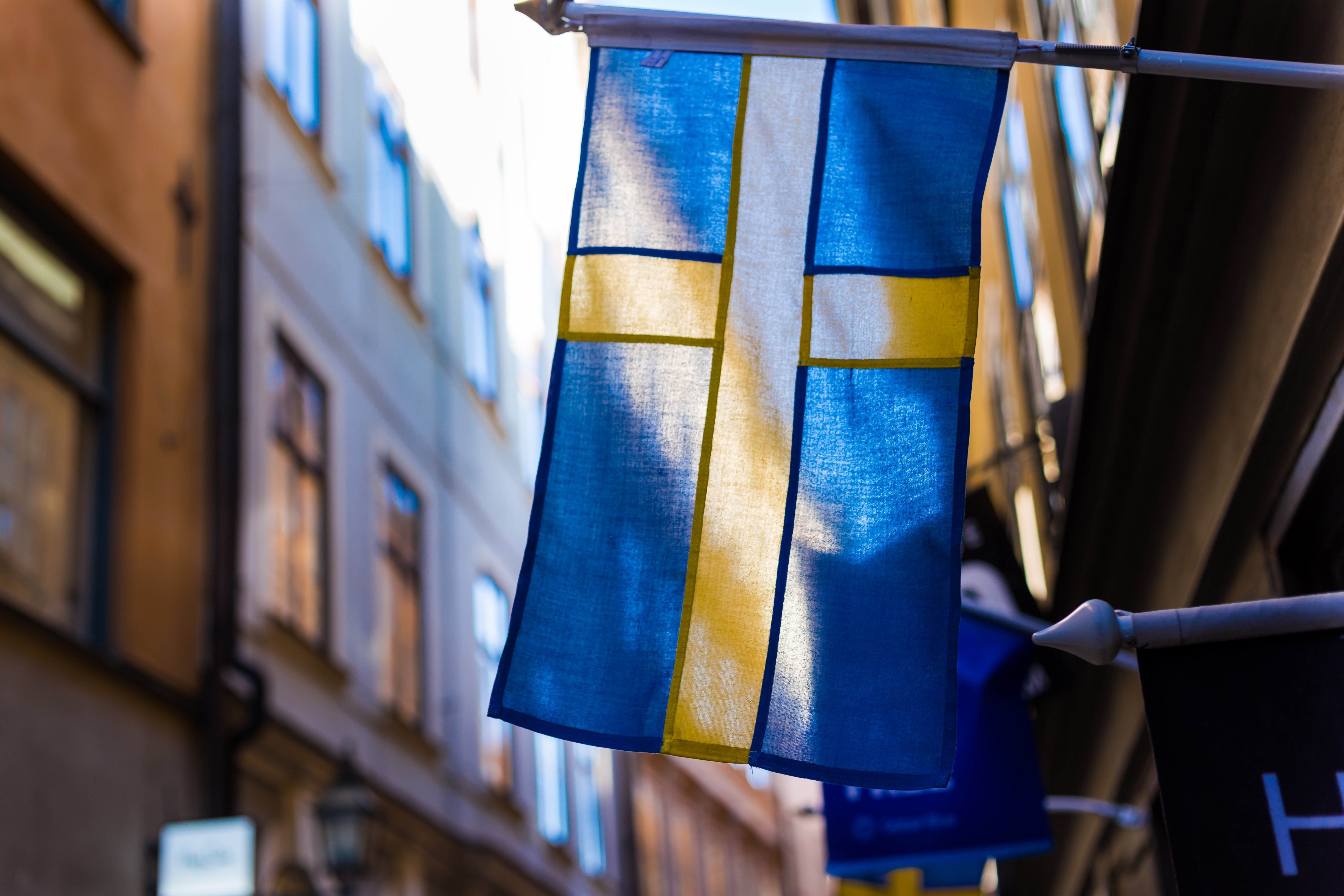 Explainer: Sweden's divergent COVID-19 strategy
