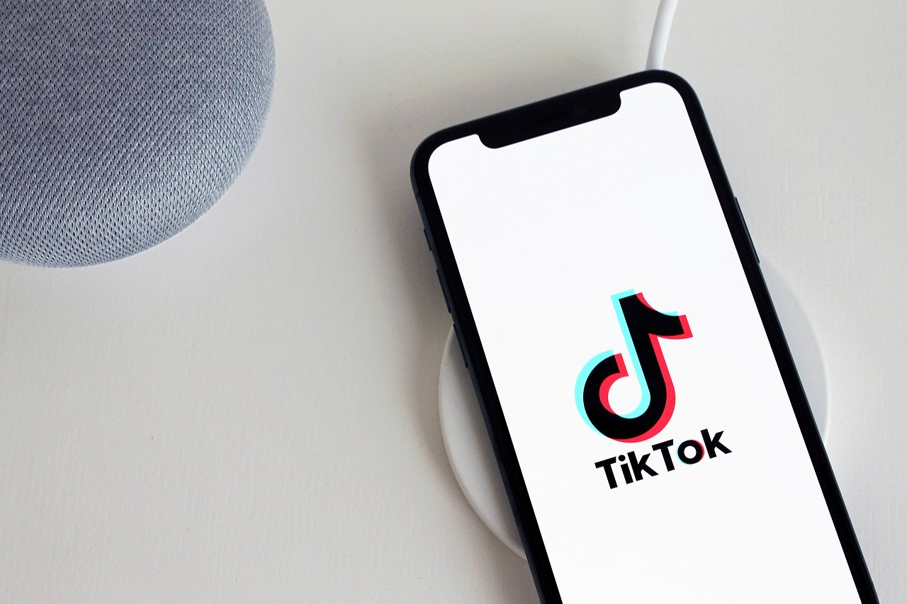 TikTok: Gen Z and the art of political expression