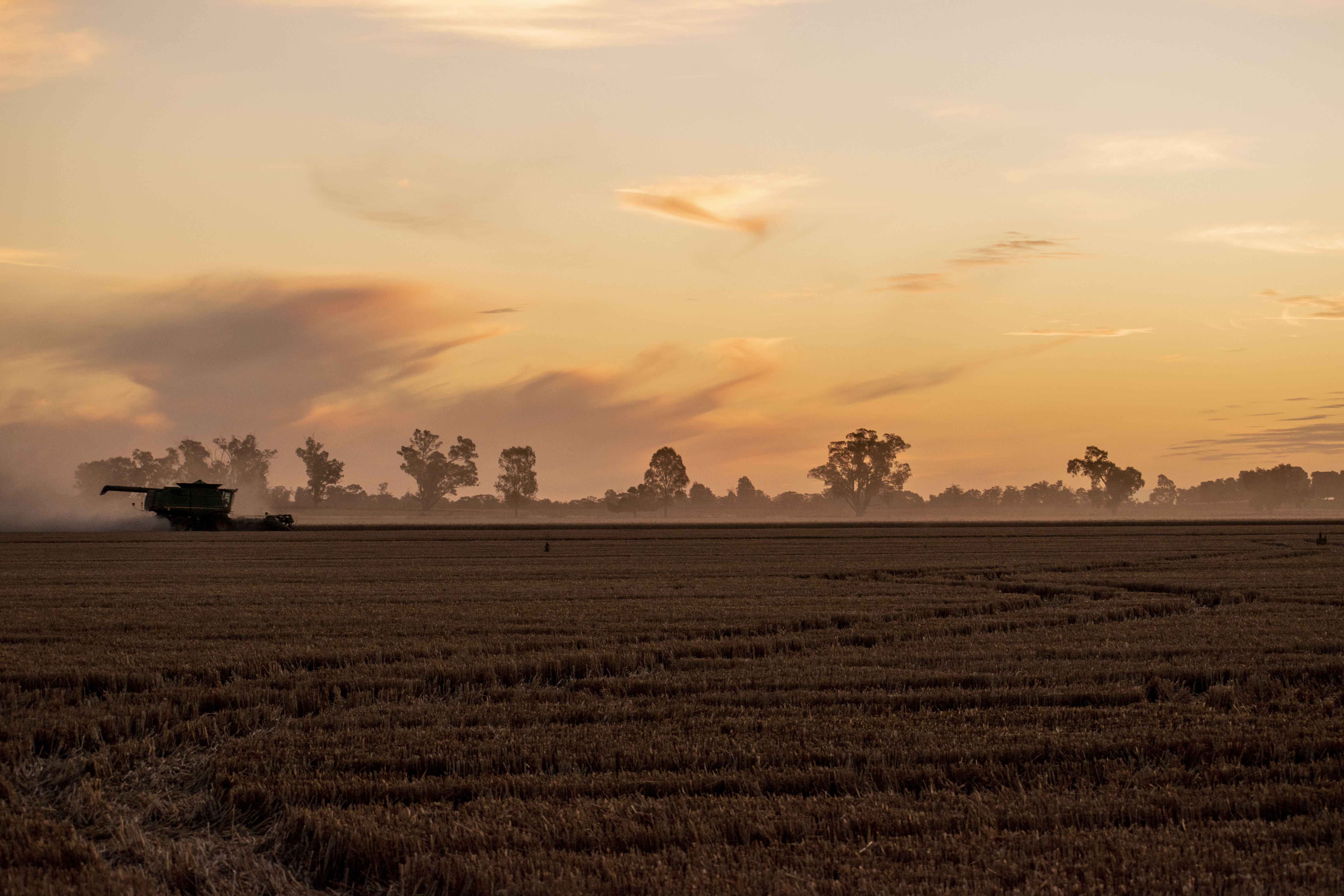 Murray Darling Basin: Left high and dry